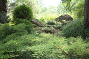 Fairy Place 01 CD-STOCK by CD-STOCK