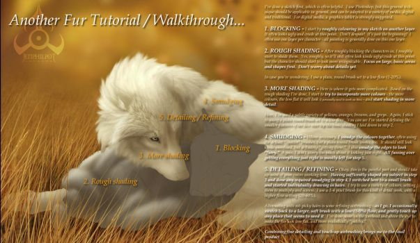Another Fur Tutorial... by jocarra