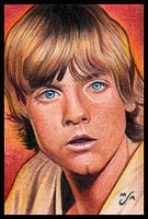 ANH Luke Sketch Card by MJasonReed