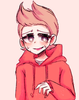 it's me! tord! by poormachine