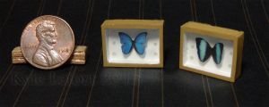 Mini Morpho Butterfly Riker Mounts Set by Kyle-Lefort