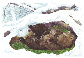Topotok, the bear cub. In the lair. by Nikkolainen