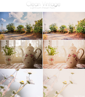 Clean Vintage Lightroom Preset by Welton-Arruda