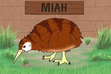 Miah the Pet Kiwi by ChishioOchita