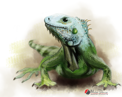 Iguana by Milee-Design