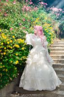 Secret Garden. Euphemia, Code geass cosplay. by Giuzzys