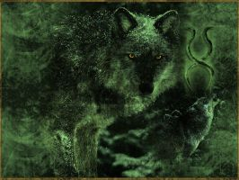 Wolf Requiem by potion