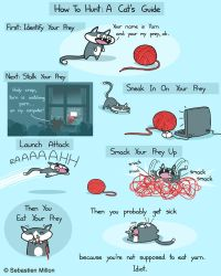 How To Hunt: A Cat's Guide by sebreg