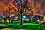 Tree of light by GraphicDensity