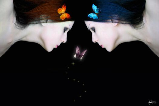 Butterfly Kisses by Alegion
