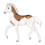 N3135 Padro Foal Design for DarkestNation by casinuba