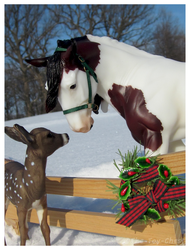 Breyer - Winter Visitor by The-Toy-Chest