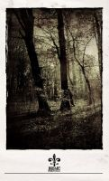lost in the forrest 01 by rob-art