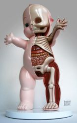 22' Kewpie Dissection sculpt LA by freeny