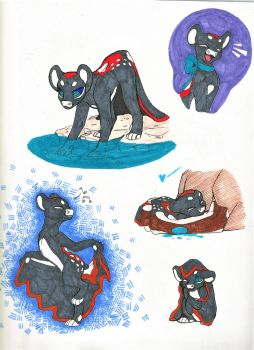 Brevil Sketches (EVOLOONS) by CoffeeAddictedDragon