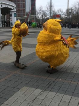 Fat Chocobo Cosplay by calleymacleod
