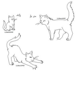 Free Cat Bases:. by rascal4488