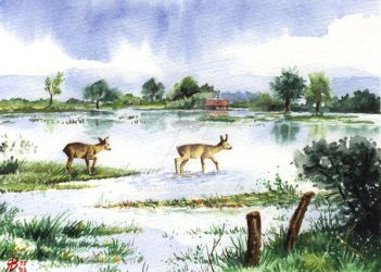 Wet Feet, painting for sale by rieke-b