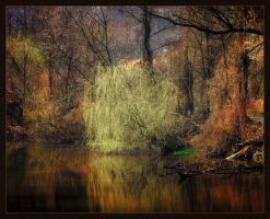 Early Spring by vodj