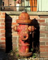 Late Afternoon Hydrant  by peterkopher
