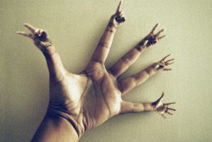 The hand.s by AlexCarata