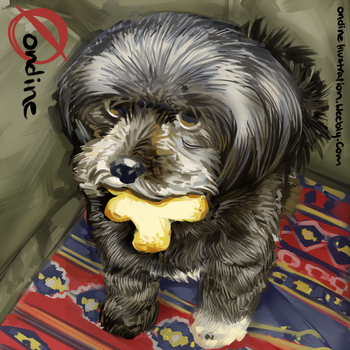 Pet Portrait Commission 1 by LilyOndine