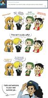 Ask the strawhats No. 8 by SnajeyArt