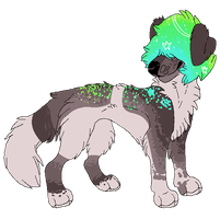 auction adopt open by kimerii