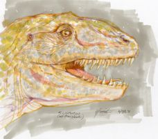 Allosaurus Head by peannlui
