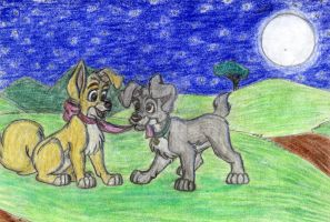 Scamp And Angel Bella Notte by BillieJean485