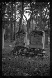 Mossy Graves by FrodiusMaximus