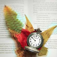 Time Effects Everything by LashelleValentine