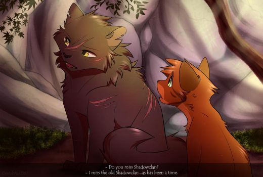 The Old Shadowclan by CristalWolf567