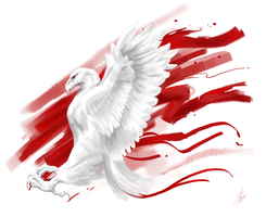 White and Red by ThunderboltFire