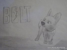 Bolt by acefighter028