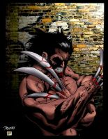 Wolvie Colorfied by sludger