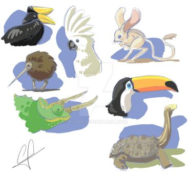 Animals sketch color by k-yoh