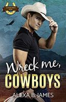 Cowboy Romance Book by jasonaaronbaca