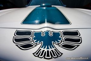 The Firebird by AmericanMuscle