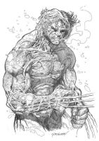 Wolverine: Weapon X by Reybronx