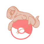 NebNom Pokeball YCH AUCTION [CLOSED] by Resumed-Bby