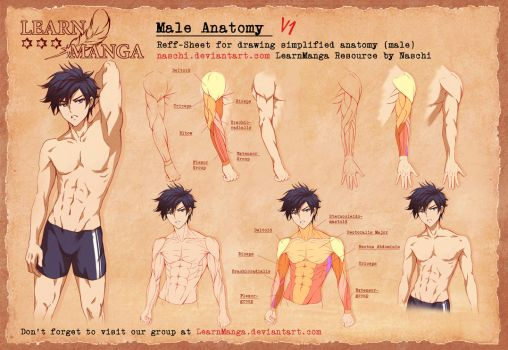 Learn Manga Male Anatomy V1 by Naschi