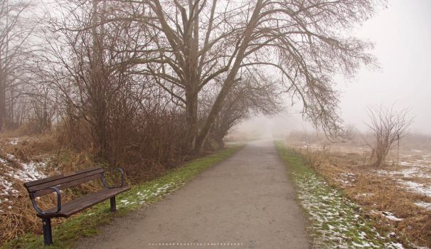 Misty Morning Path by Val-Faustino