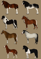Breed adopts - 6/8 OPEN by SlightlyMadStables