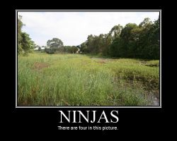 Ninjas Motivational Poster by Stollrofl