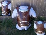 Kjerulf's Armor by SteamViking