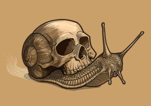 Skull Snail by TmoeGee