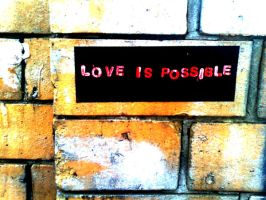 Love is Possible by error-23