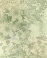 Floral bg by Junk-stock