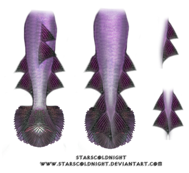 Mermaid Tails 3 PNG by StarsColdNight